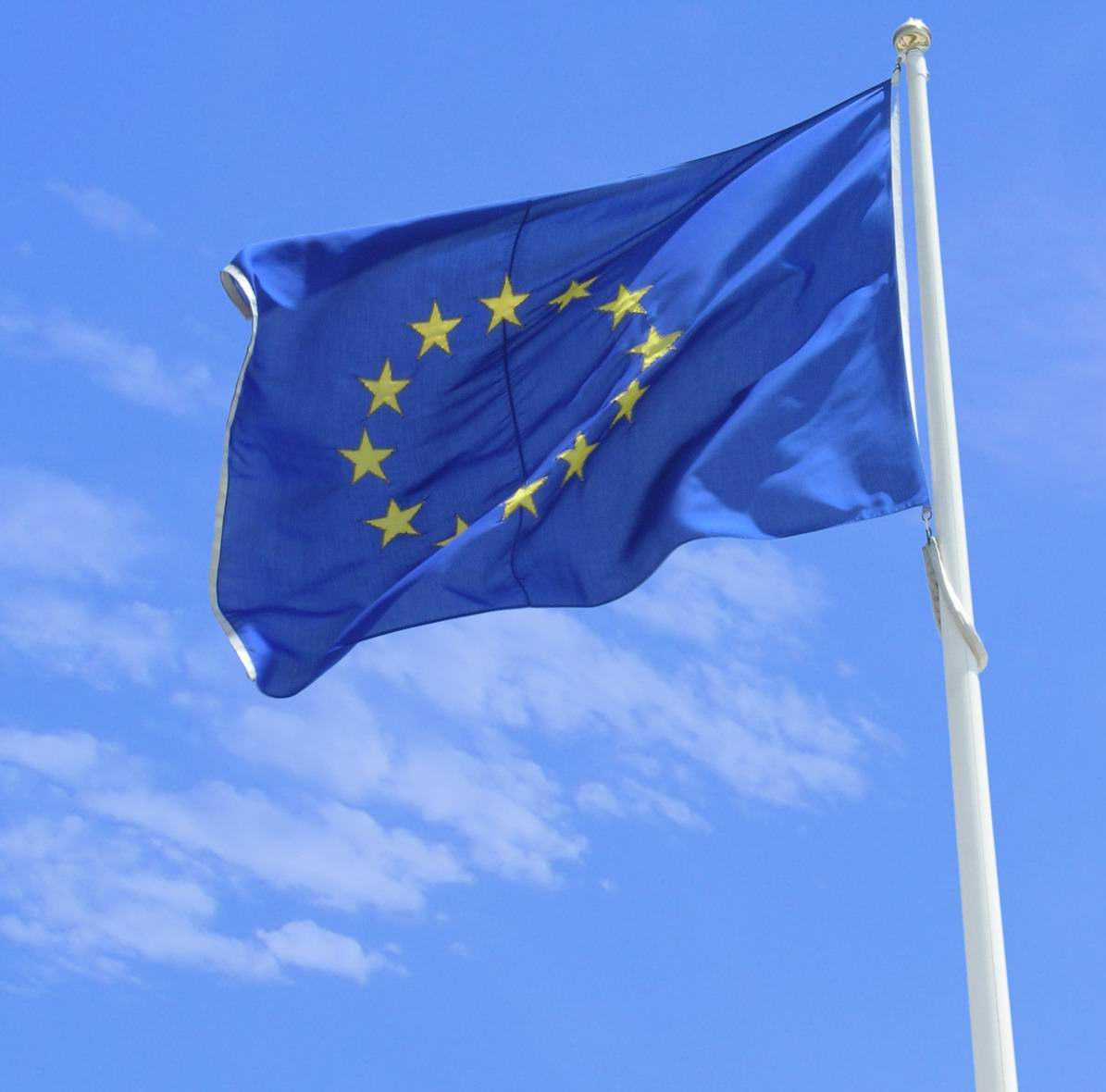 La entrada en vigor de la SEPA, las elecciones europeas y las decisiones del BCE: factores decisivos para el 2014.