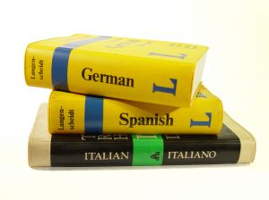 Traductores paginas web al ingles madrid